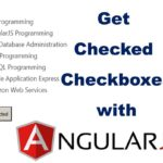 Get Checked Checkboxes with AngularJS